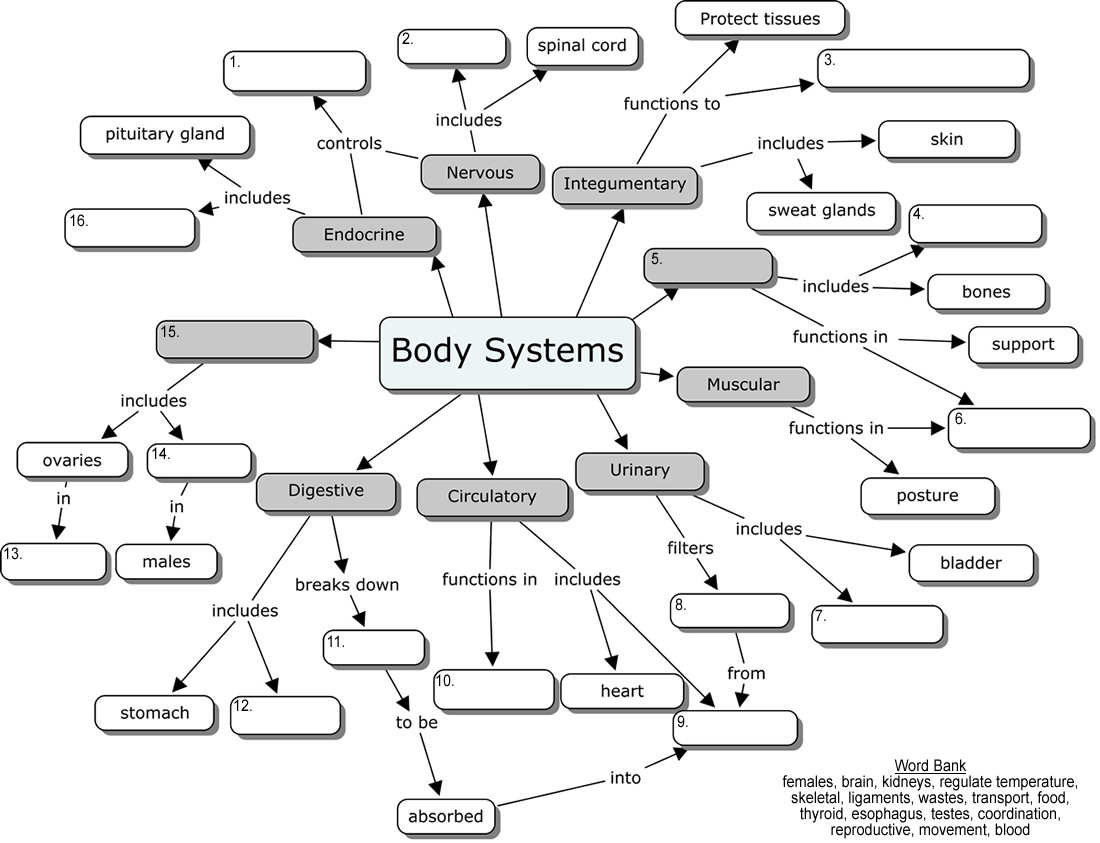 module 02 case study hematology and cardiovascular systems